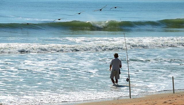 best line for surf fishing