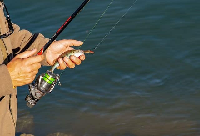 best monofilament fishing line for saltwater