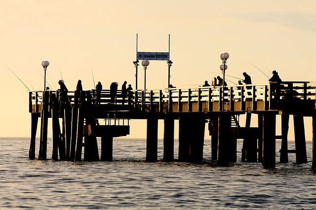 saltwater pier fishing